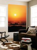 Pacific Grove Beach, Monterey Peninsula, California, USA Plakater af Stuart Westmorland
