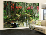 View of Azaleas and Cypresses Magnolia Plantation, Charleston, South Carolina, USA Wall Mural – Large by Adam Jones