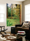 Rainforest, Olympic National Park, Washington State, USA Poster by Stuart Westmorland