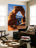 View of Delicate Arch at Arches National Park, Utah, USA Posters by Scott T. Smith