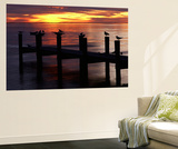 View of Birds on Pier at Sunset, Fort Myers, Florida, USA Plakat af Adam Jones