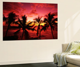 View Palm Trees on Beach, Big Islands, Kona, Hawaii, USA Poster by Stuart Westmorland