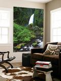 Wahclella Falls and Tanner Creek, Columbia River Gorge, Oregon, USA Plakater af Adam Jones
