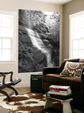 View of Waterfall, Jessamine County, Kentucky, USA Prints by Adam Jones