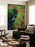 Glacier-Fed Stream, Pink Monkey-Flowers, Mt Rainier National Park, Washington, USA Kunst af Stuart Westmorland