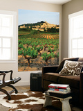 View of Provence Vineyard, Luberon, Bonnieux, Vaucluse, France Prints by David Barnes