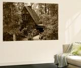 Cradle of Forestry in America, Pisgah National Forest, North Carolina, USA Plakater af Adam Jones