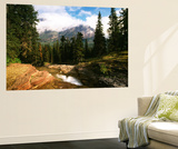 View of Mountain Stream, Glacier National Park, Montana, USA Poster af Adam Jones