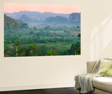 Limestone Hill, Farmland, Vinales Valley, UNESCO World Heritage Site, Cuba Posters by Keren Su