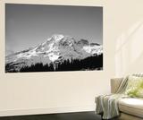 Mt Rainier at Sunset, Mt Rainier National Park, Washington, USA Plakater af Paul Souders