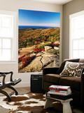 Mt Desert Island, Autumn View, Acadia National Park, Maine, USA Posters af Adam Jones