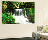 View of Waterfall at Willamette National Forest, Oregon, USA Plakat af Stuart Westmorland