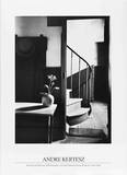 Chez Mondrian Collectable Print by Andre Kertesz