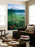 Meadow Flowers, Mt Rainier National Park, Washington, USA Poster af Stuart Westmorland