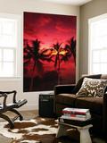 View Palm Trees on Beach, Big Islands, Kona, Hawaii, USA Posters af Stuart Westmorland