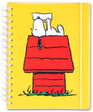 Peanuts Friendship Note in the Mail Journal Journal