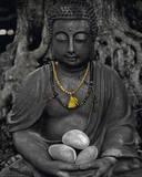 Buddha Stone Plakáty