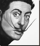 Dali Stretched Canvas Print by Thea Fear