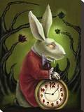 Levin White Rabbit Stretched Canvas Print by Diana Levin