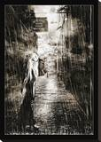 Noir Stretched Canvas Print by Chris Kape