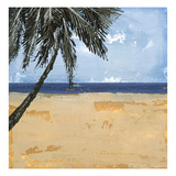 Peaceful Beach 1 Print by David Dauncey