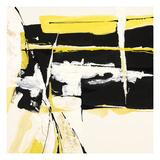 Box Canyon Giclée-tryk af Chris Paschke