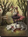 Red Riding Hood Stretched Canvas Print by Diana Levin