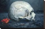 RIP Stretched Canvas Print by Daniel Esparza