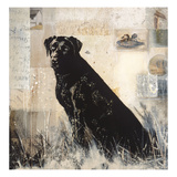 Best of Breed Prints by Mary Calkins