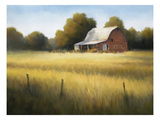 Country Meadow II Giclée-Druck von David Marty