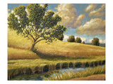 Meadowland Giclee Print by Stephen Henning