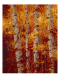 The Splender of Autumn Giclee Print by Tim Howe
