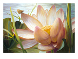 Lotus Landing Print by Elizabeth Horning
