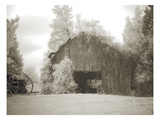 Barn 2 Photographic Print by M.B. Phelps