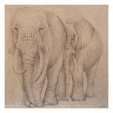 Elefantes en el Papel Dos Giclee Print by Carolina Luzon