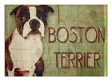 Boston Terrier Giclee Print by Wendy Presseisen