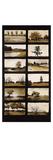 Twelve Trees Giclee Print by Lei Hayden