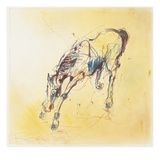 Horse studies 1, Fran Gyn Posters by  Porter Design