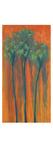 La Palma Naranja Giclee Print by Jo Mathers