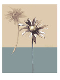 Simplicity 2 Giclee Print by Ashley David