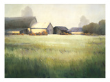 Morning Stillness Giclee Print by David Marty