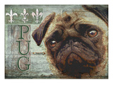 Pug Posters by Wendy Presseisen