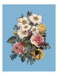 Melange en Bleu Un Giclee Print by Michele Roohani