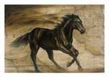 Open Range Giclee Print by Elizabeth Hope