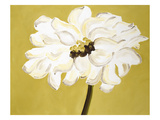 White Flower on Ochre Art by Soraya Chemaly