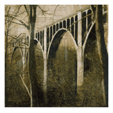 Bridge Above Poster by John Douglas