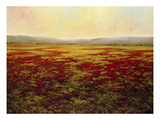 The Magnificent Season of Autumn B Giclee Print by Tim Howe