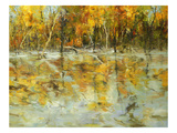 Reflections of Autumn Giclee Print by Tim Howe