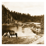 Mountain Lake Photographic Print by  Trevally Inc.