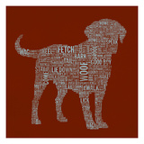 Dog Type 1C Giclee Print by Stella Bradley